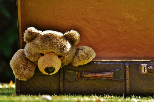 leather-antique-wildlife-junk-toy-lion-497854-pxhere.com