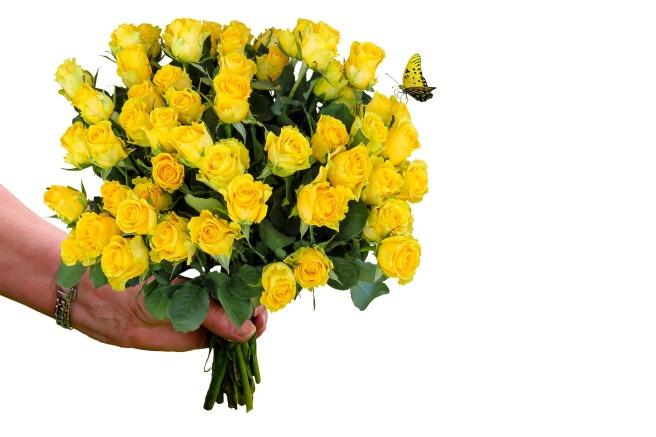 flowers-2199239_1920