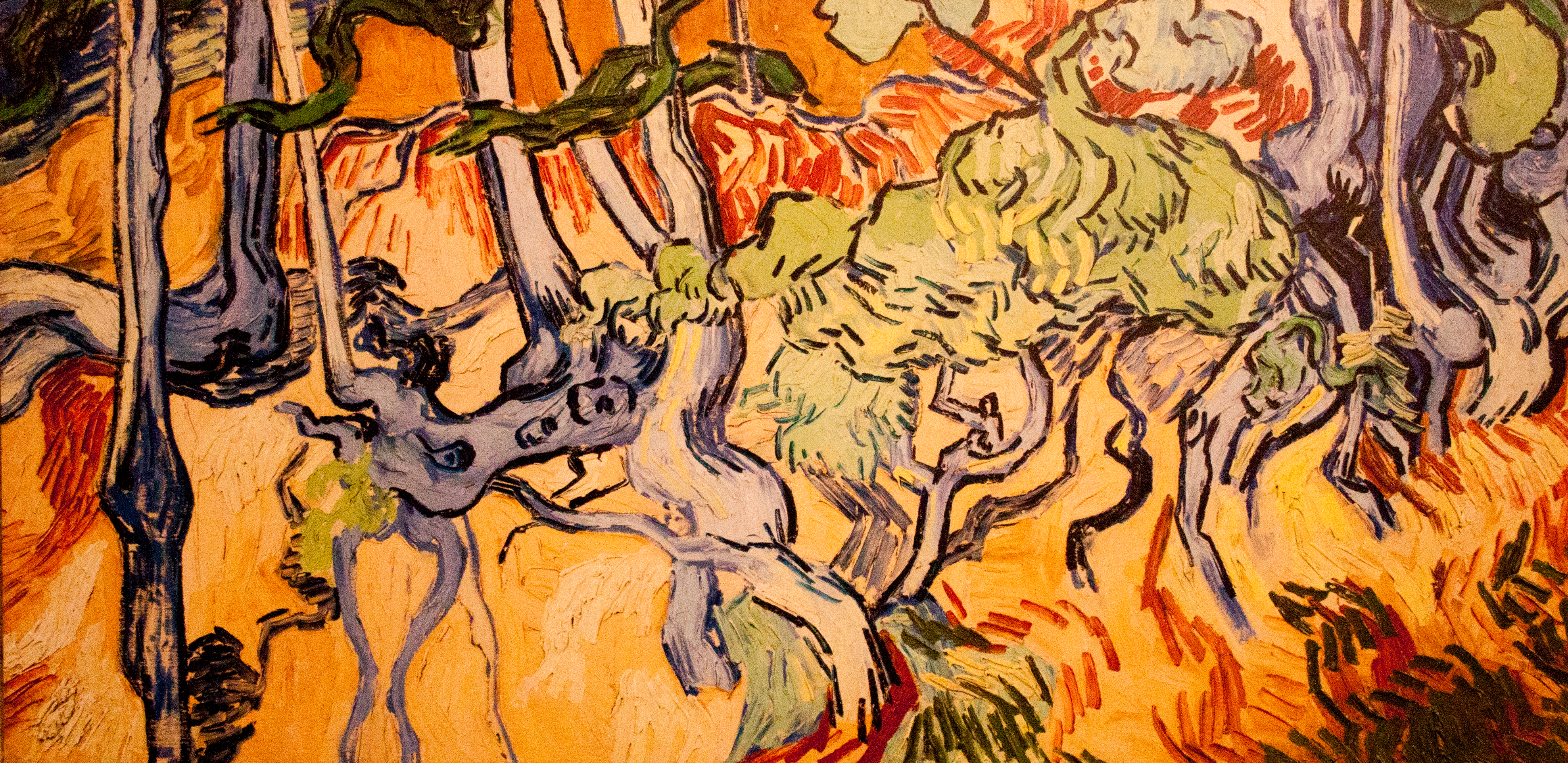 Tree_Roots_and_Trunks_(JH_2113)_-_My_Dream